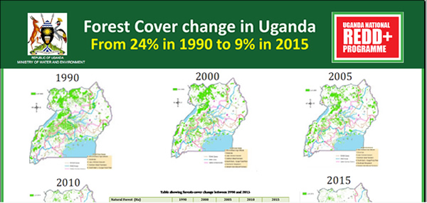 Forest cover change in Uganda 1990-2015