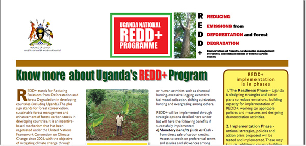 Newspaper brief on Uganda's REDD+ Programme