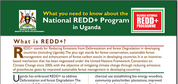 Uganda National REDD+ Programme Flyer